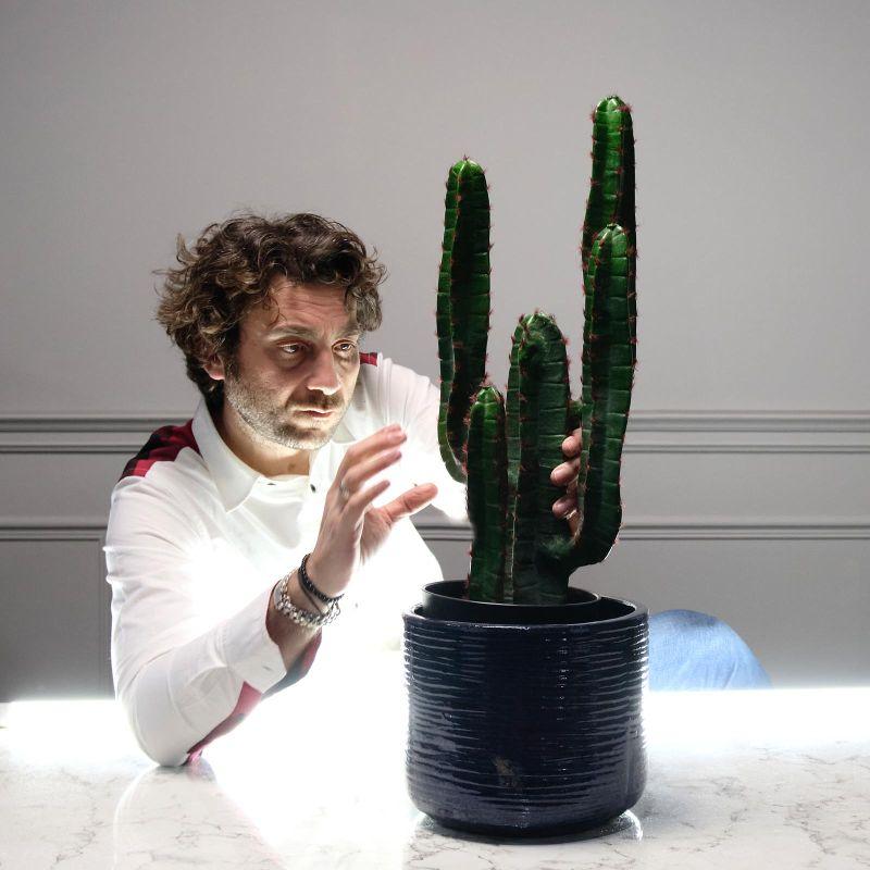 Τεχνητό Φυτό Κάκτος 60 εκ.