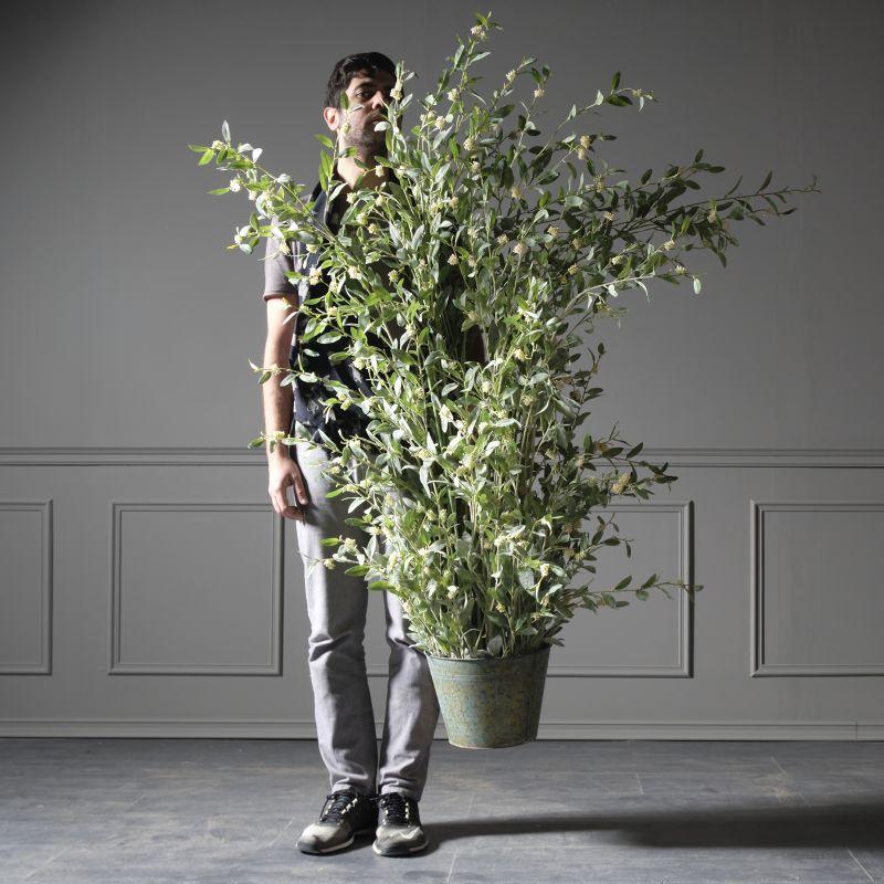 Τεχνητό Φυτό Silverberry 183 εκ.