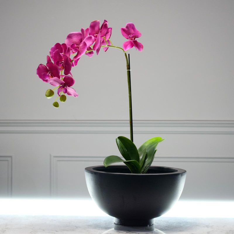 Τεχνητό Φυτό Ορχιδέα Φούξια 63 εκ.