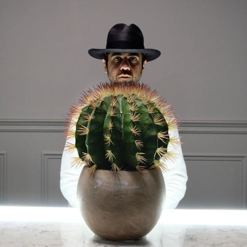 Τεχνητό Φυτό Κάκτος 54 εκ.