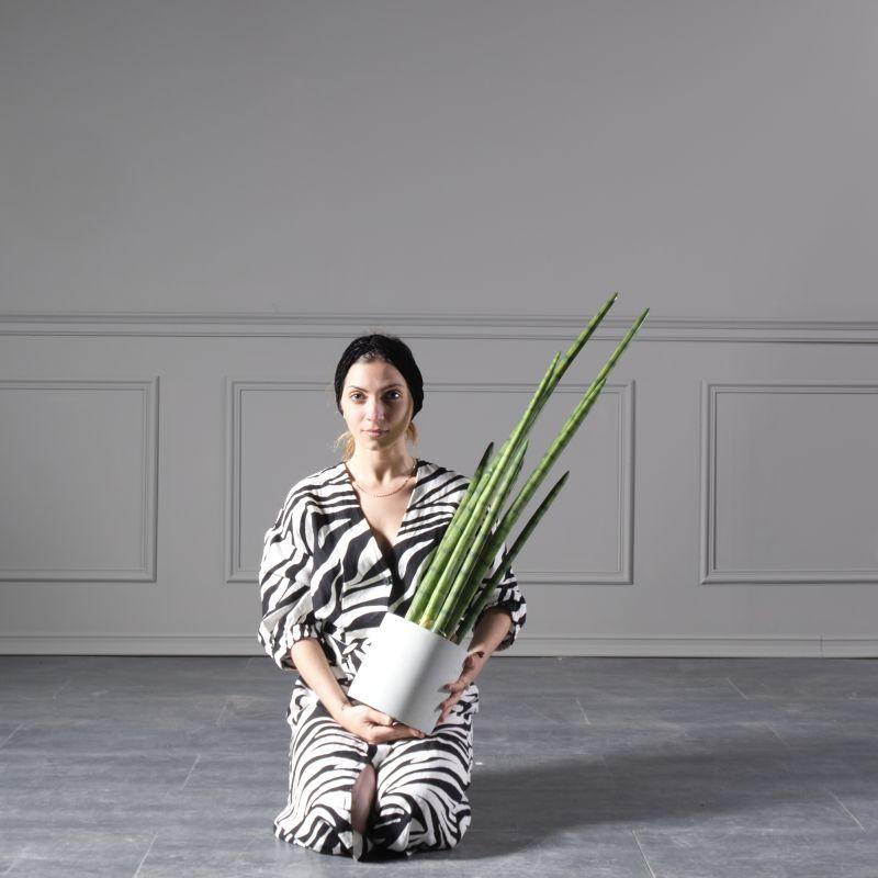 Τεχνητό Φυτό Σανσεβιέρα 110 εκ.
