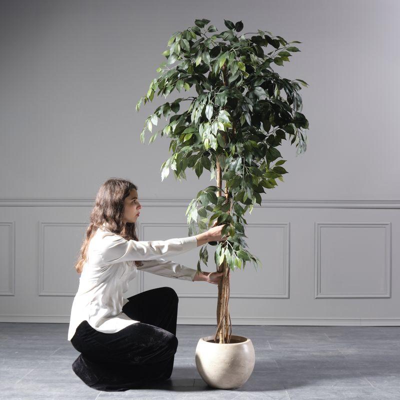 Τεχνητό Δέντρο Φίκος