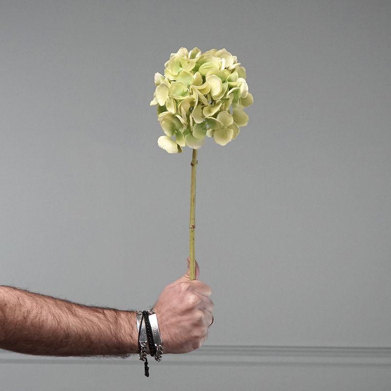 Τεχνητό Κλωνάρι Ορτανσία Πράσινο 52 εκ.