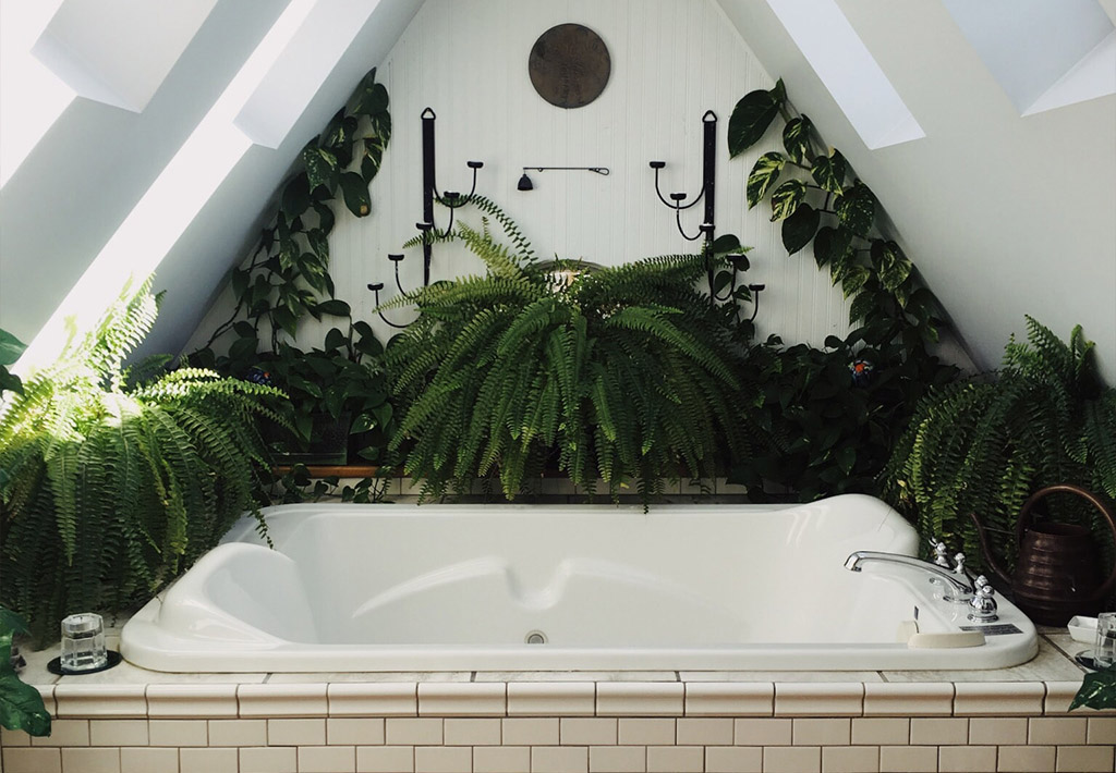 4 λόγοι για να χρησιμοποιήσετε τεχνητά φυτά στο μπάνιο του σπιτιού σας