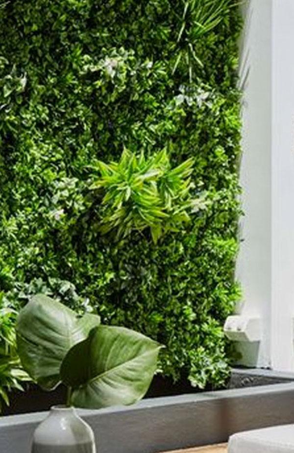 Πράσινοι τοίχοι